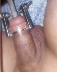 cock torture extrem urethral