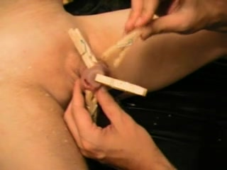 CBT - Cock Torture Clothespins
