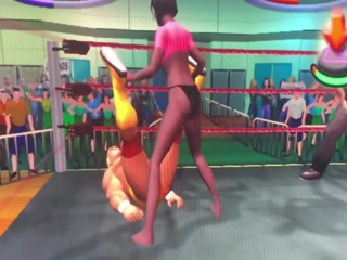 Video Game WWE Wrestling Low Blows