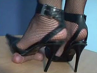 Cock And Ball Trample - Fishnet