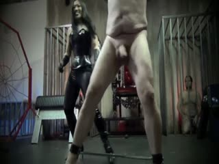 Manhood Cruushed By Merciless Ballbusting