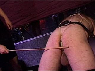 Horny MILF Ties Up Her Slave And Punishes Him