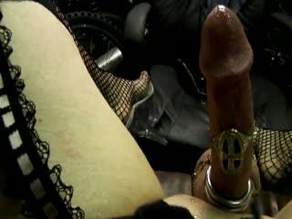 Carmenloos Cuming