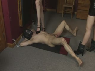 Ultimate Ballbusting
